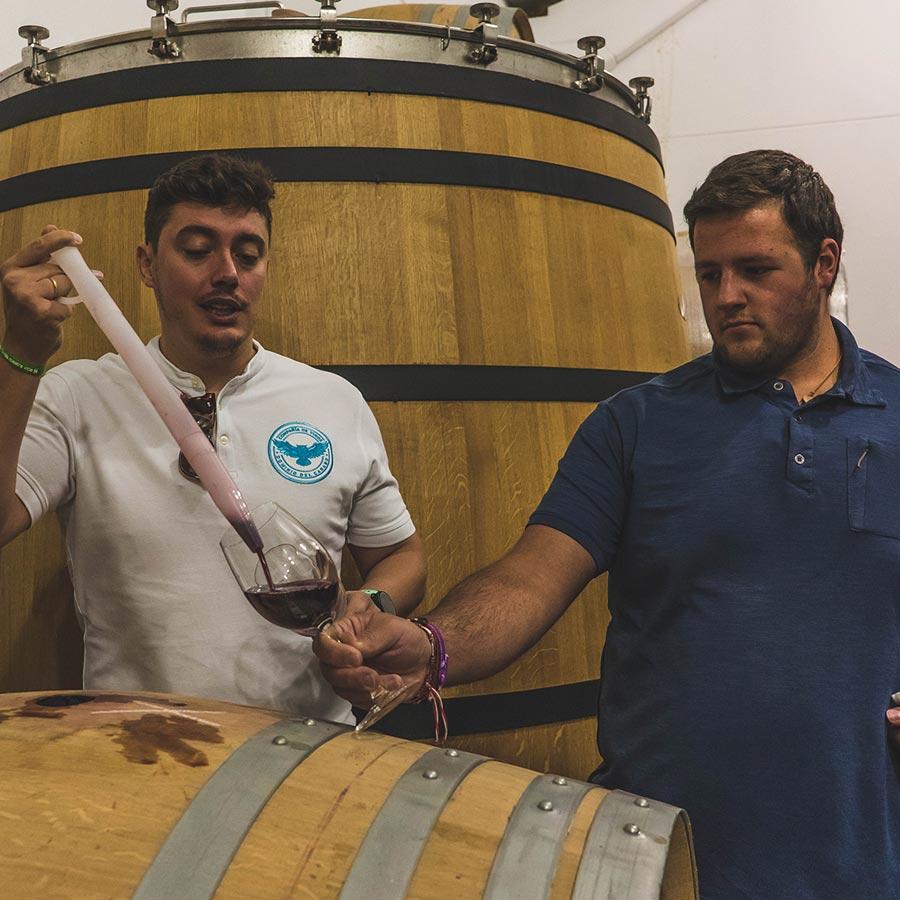 Visita a bodega de Rioja más cata de vino